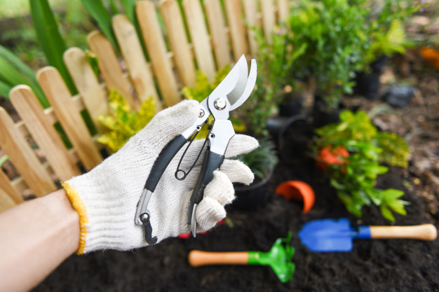 Best Pruning Shears: 5 Best Ones for You to Choose in 2020!