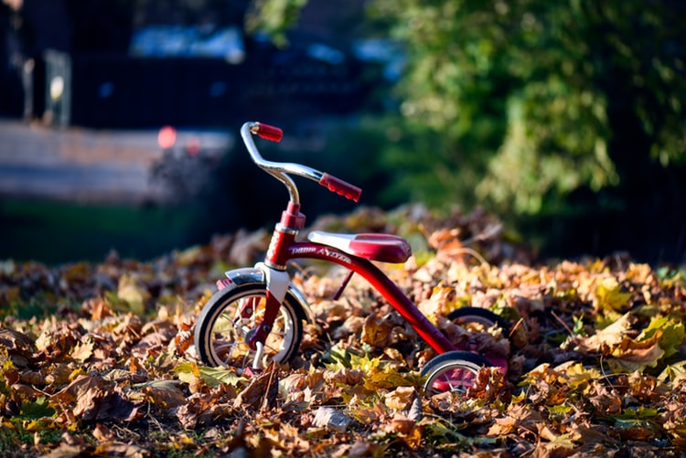 Best Tricycle for Your 2 year old: 10 Comparisons for you! (2021)
