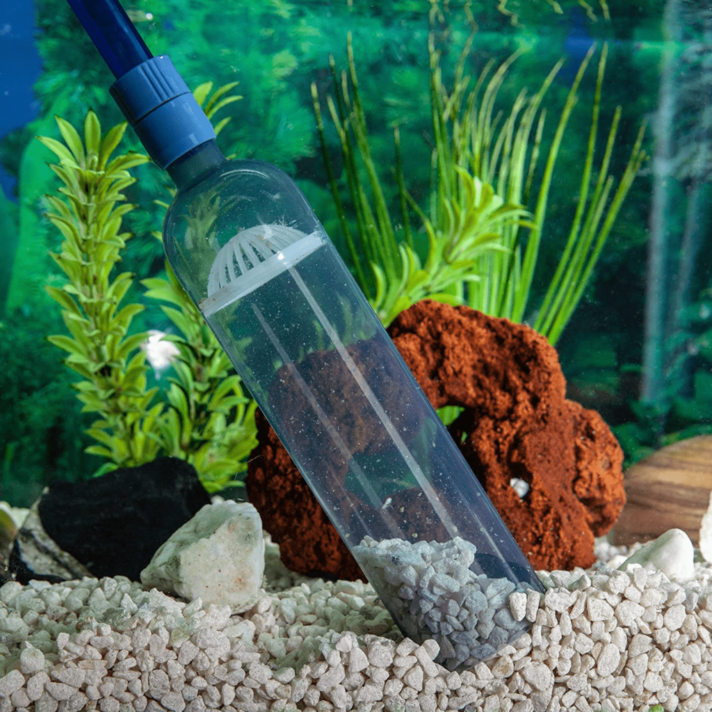 Cleaning by Vacuuming in a Turtle Tank