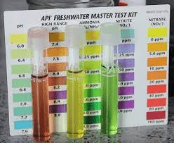 Maintaining and Measuring The Aquarium's Chemical Levels